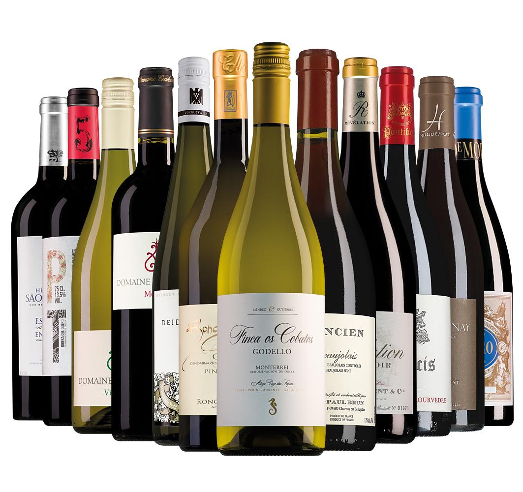 Proefpakket Wijnbericht januari (12 flessen)
